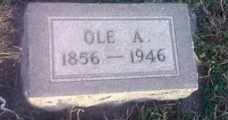 LEE, OLE A - Hamlin County, South Dakota | OLE A LEE - South Dakota Gravestone Photos