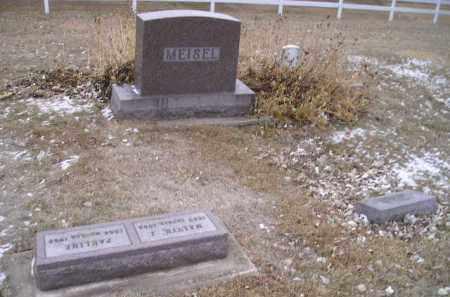 MEISEL, GROUP - Hamlin County, South Dakota | GROUP MEISEL - South Dakota Gravestone Photos