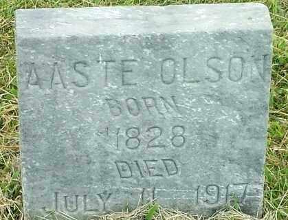 OLSON, AASTE - Hamlin County, South Dakota   AASTE OLSON - South Dakota Gravestone Photos