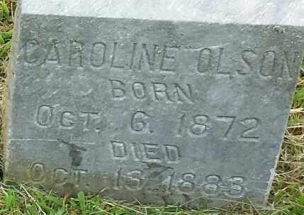 OLSON, CAROLINE - Hamlin County, South Dakota   CAROLINE OLSON - South Dakota Gravestone Photos