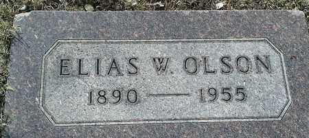 OLSON, ELLIAS W - Hamlin County, South Dakota | ELLIAS W OLSON - South Dakota Gravestone Photos