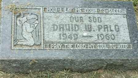 PALO, DAVID W - Hamlin County, South Dakota   DAVID W PALO - South Dakota Gravestone Photos