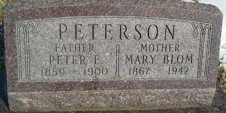 PETERSON, PETER E - Hamlin County, South Dakota | PETER E PETERSON - South Dakota Gravestone Photos