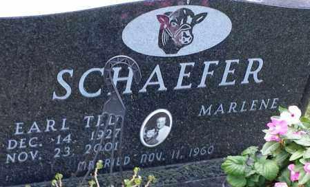 SCHAEFER, EARL TED - Hamlin County, South Dakota | EARL TED SCHAEFER - South Dakota Gravestone Photos
