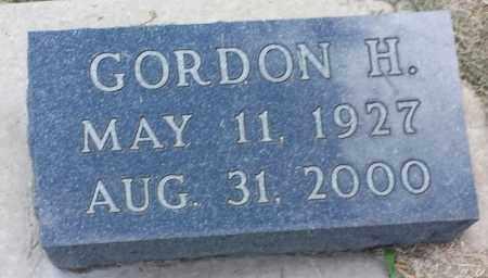 SKOGLUND, GORDON H - Hamlin County, South Dakota | GORDON H SKOGLUND - South Dakota Gravestone Photos