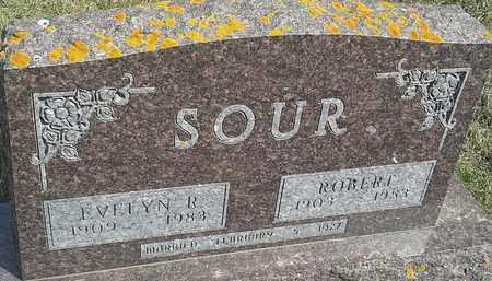 SOUR, ROBERT - Hamlin County, South Dakota | ROBERT SOUR - South Dakota Gravestone Photos