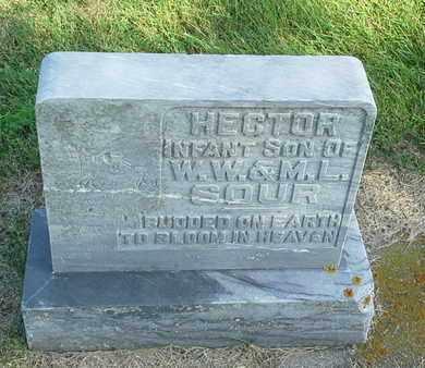 SOUR, HECTOR - Hamlin County, South Dakota | HECTOR SOUR - South Dakota Gravestone Photos