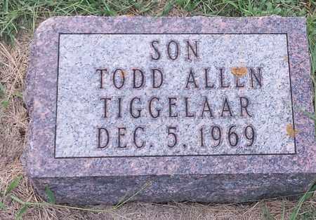 TIGGELAAR, TODD ALLEN - Hamlin County, South Dakota | TODD ALLEN TIGGELAAR - South Dakota Gravestone Photos