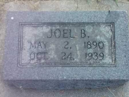 TOLSON, JOEL B - Hamlin County, South Dakota | JOEL B TOLSON - South Dakota Gravestone Photos