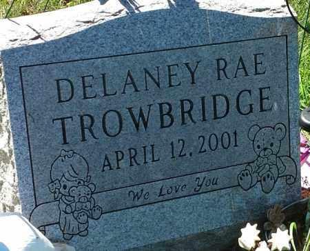 TROWBRIDGE, DELANEY RAE - Hamlin County, South Dakota | DELANEY RAE TROWBRIDGE - South Dakota Gravestone Photos