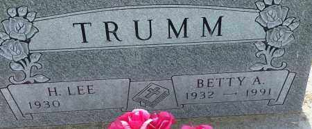 TRUMM, H LEE - Hamlin County, South Dakota   H LEE TRUMM - South Dakota Gravestone Photos