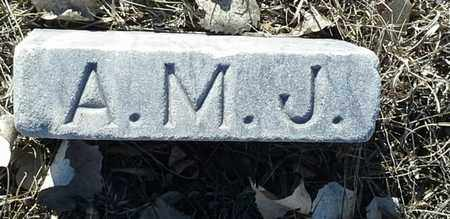 JOHNSON, A.M. - Hamlin County, South Dakota | A.M. JOHNSON - South Dakota Gravestone Photos