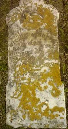 UNREADABLE, WILLIE A - Hamlin County, South Dakota | WILLIE A UNREADABLE - South Dakota Gravestone Photos