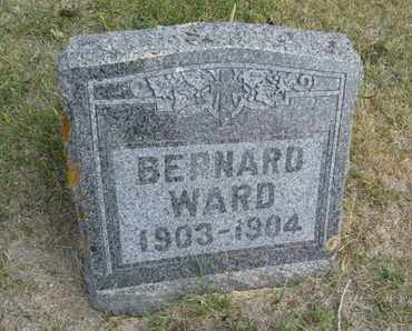 WARD, BERNARD - Hamlin County, South Dakota | BERNARD WARD - South Dakota Gravestone Photos