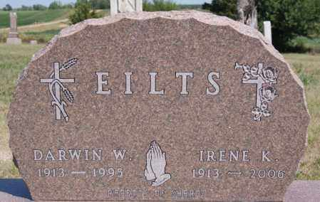 EILTS, DARWIN W - Hanson County, South Dakota | DARWIN W EILTS - South Dakota Gravestone Photos
