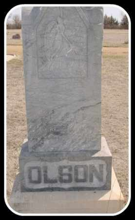 OLSON, GEORGE - Hughes County, South Dakota | GEORGE OLSON - South Dakota Gravestone Photos