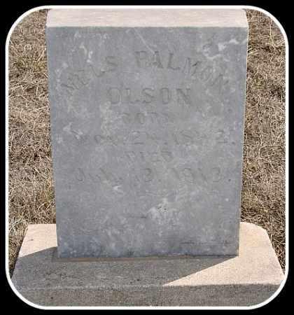 OLSON, NELS PALMON - Hughes County, South Dakota | NELS PALMON OLSON - South Dakota Gravestone Photos