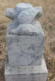 AISENBREY, ELISABETHA - Hutchinson County, South Dakota | ELISABETHA AISENBREY - South Dakota Gravestone Photos