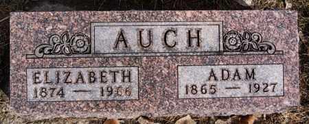 AUCH, ELIZABETH - Hutchinson County, South Dakota | ELIZABETH AUCH - South Dakota Gravestone Photos