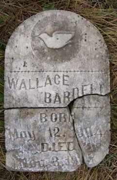 BARDELL, WALLACE - Hutchinson County, South Dakota | WALLACE BARDELL - South Dakota Gravestone Photos