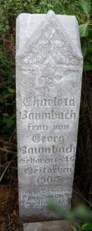 BAUMBACH, CHARLOTA - Hutchinson County, South Dakota | CHARLOTA BAUMBACH - South Dakota Gravestone Photos