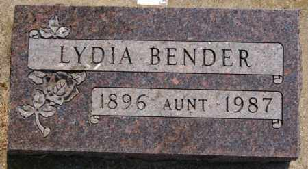 BENDER, LYDIA - Hutchinson County, South Dakota | LYDIA BENDER - South Dakota Gravestone Photos