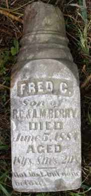 BERRY, FRED C - Hutchinson County, South Dakota | FRED C BERRY - South Dakota Gravestone Photos