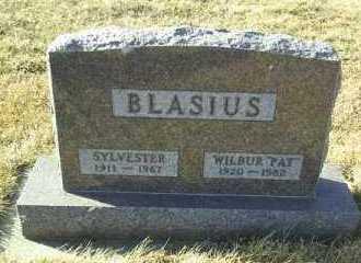 BLASIUS, SYLVESTER - Hutchinson County, South Dakota | SYLVESTER BLASIUS - South Dakota Gravestone Photos