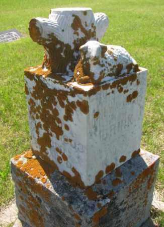 BRINK, MARY E? - Hutchinson County, South Dakota   MARY E? BRINK - South Dakota Gravestone Photos