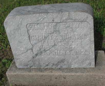 FISCHER, ELMER EDWIN - Hutchinson County, South Dakota | ELMER EDWIN FISCHER - South Dakota Gravestone Photos