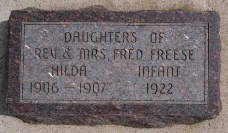 FREESE, INFANT - Hutchinson County, South Dakota | INFANT FREESE - South Dakota Gravestone Photos