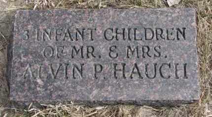 HAUCH, 3 INFANT CHILDREN - Hutchinson County, South Dakota | 3 INFANT CHILDREN HAUCH - South Dakota Gravestone Photos