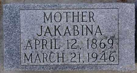 HECKENLAIBLE, JAKABINA - Hutchinson County, South Dakota | JAKABINA HECKENLAIBLE - South Dakota Gravestone Photos