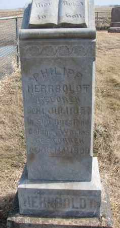 HERRBOLDT, PHILIPP - Hutchinson County, South Dakota | PHILIPP HERRBOLDT - South Dakota Gravestone Photos