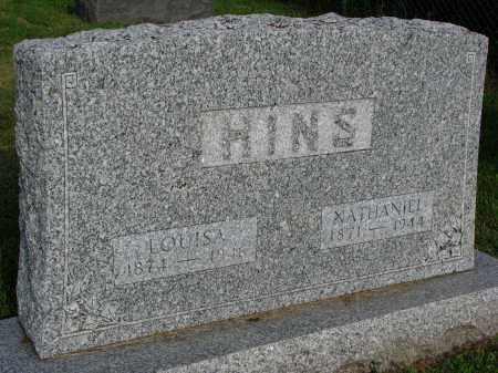 HINS, NATHANIEL - Hutchinson County, South Dakota | NATHANIEL HINS - South Dakota Gravestone Photos