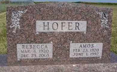 HOFER, AMOS - Hutchinson County, South Dakota | AMOS HOFER - South Dakota Gravestone Photos
