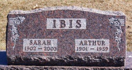 IBIS, ARTHUR - Hutchinson County, South Dakota | ARTHUR IBIS - South Dakota Gravestone Photos