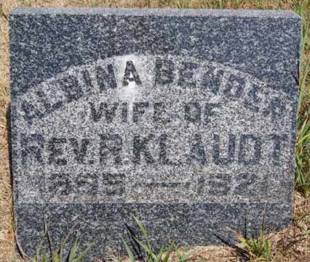 BENDER KLAUDT, ALBINA - Hutchinson County, South Dakota | ALBINA BENDER KLAUDT - South Dakota Gravestone Photos