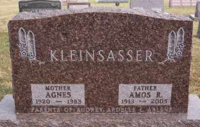 KLEINSASSER, AGNES - Hutchinson County, South Dakota | AGNES KLEINSASSER - South Dakota Gravestone Photos