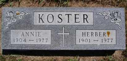 KOSTER, HERBERT - Hutchinson County, South Dakota | HERBERT KOSTER - South Dakota Gravestone Photos