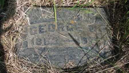 LAYTON, GEORGE W. - Hutchinson County, South Dakota   GEORGE W. LAYTON - South Dakota Gravestone Photos