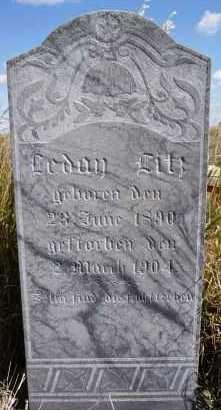 LITZ, LEDAN - Hutchinson County, South Dakota   LEDAN LITZ - South Dakota Gravestone Photos