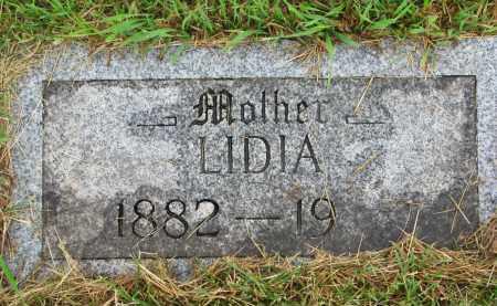 MEHLHAFF, LIDIA - Hutchinson County, South Dakota | LIDIA MEHLHAFF - South Dakota Gravestone Photos
