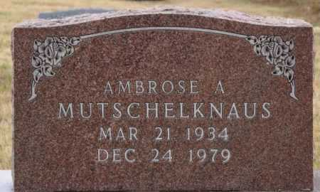 MUTSCHELKNAUS, AMBROSE A - Hutchinson County, South Dakota | AMBROSE A MUTSCHELKNAUS - South Dakota Gravestone Photos