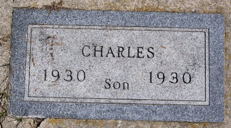 SCHNAIDT, CHARLES - Hutchinson County, South Dakota | CHARLES SCHNAIDT - South Dakota Gravestone Photos