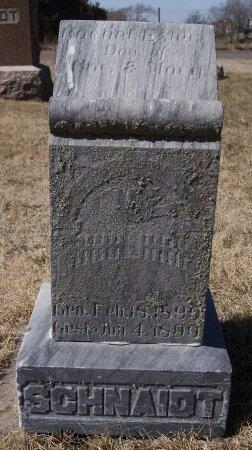 SCHNAIDT, RACHEL ESTER - Hutchinson County, South Dakota | RACHEL ESTER SCHNAIDT - South Dakota Gravestone Photos