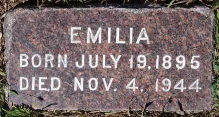 SCHULTZ, EMILIA - Hutchinson County, South Dakota | EMILIA SCHULTZ - South Dakota Gravestone Photos
