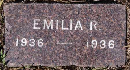 SCHULTZ, EMILIA R - Hutchinson County, South Dakota | EMILIA R SCHULTZ - South Dakota Gravestone Photos