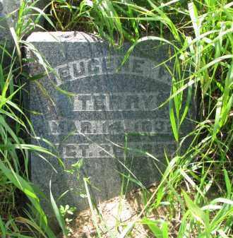 TERRY, EUGENE F. - Hutchinson County, South Dakota | EUGENE F. TERRY - South Dakota Gravestone Photos