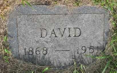 TIEDE, DAVID - Hutchinson County, South Dakota | DAVID TIEDE - South Dakota Gravestone Photos